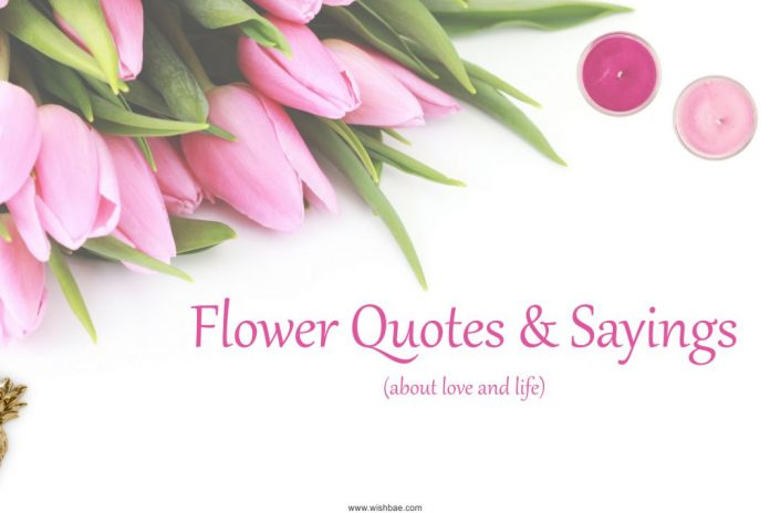 Flower Quotes about love and life