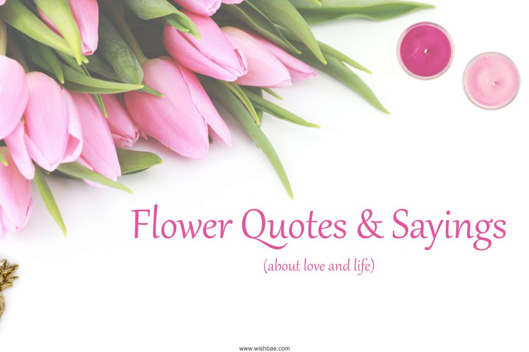 Flower Quotes & Sayings about Life and Love with Images